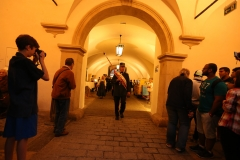 Postmusiktreffen 2014 Graz (7)